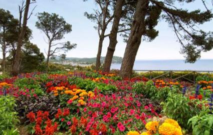 Costa brava hotel garb for Jardin botanico cap roig